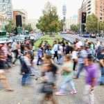 Wielokulturowość w biznesie i organizacji