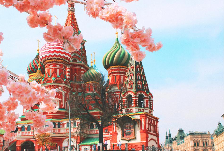 cerkiew rosyjska, na pierwszym planie kwitnące drzewo