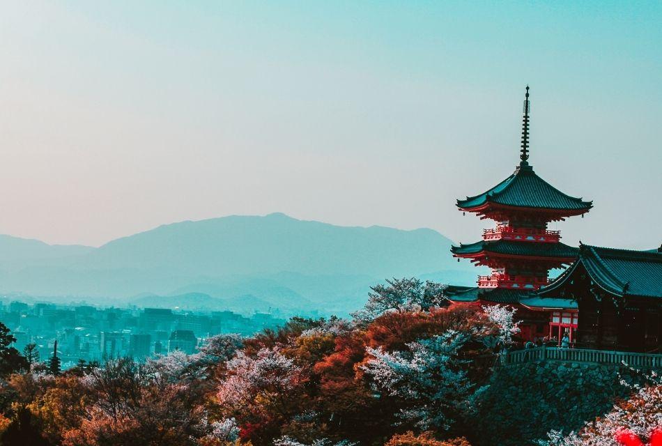 Eksport w Japonii